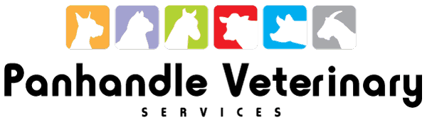 Panhandle Veterinary Services